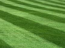 Fertilizer Program